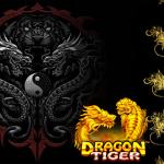 Simak Teknik Dragon Tiger yang Membantu Anda Menang
